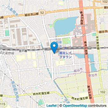 プロエレガントカラーカスミ越谷レイクタウン店